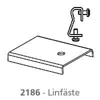 Linfaste-Dino-2186